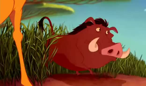 Watch and share Pumba Lion King GIFs on Gfycat