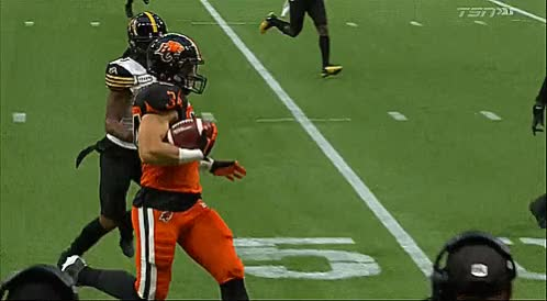 Watch and share Bc Place Stadium GIFs and David Mackie GIFs by Archley on Gfycat