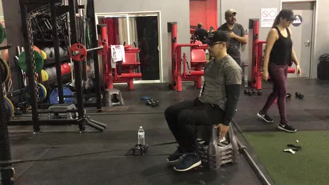 Watch banded hamstring curls GIF by Gymapp (@hardcoregym) on Gfycat. Discover more related GIFs on Gfycat