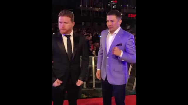 Watch and share Canelo Vs Ggg 2 GIFs and Artem Dalakian GIFs on Gfycat