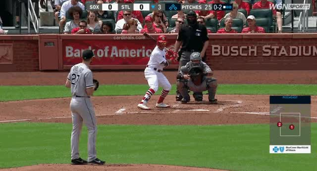 Watch giolito-wong GIF by @soxmachine on Gfycat. Discover more related GIFs on Gfycat
