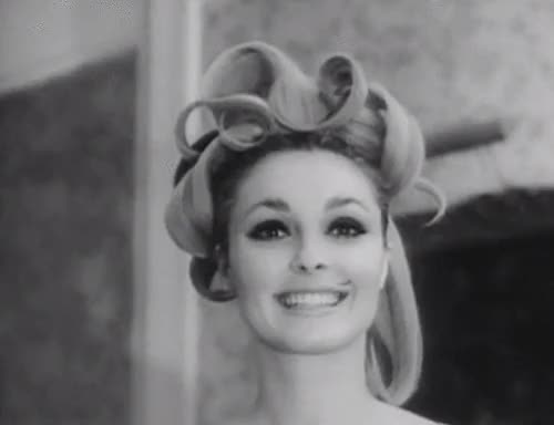 Watch no words could describe how much i adore Sharon Tate. she's  GIF on Gfycat. Discover more 1960s, 60s, gif, i made this post about 6 months ago in preparation dude, sharon tate, sixties GIFs on Gfycat