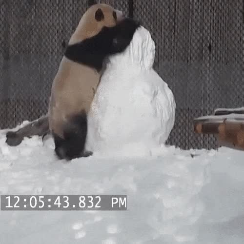 Watch and share Панда-снеговик-гифки-4210949 GIFs on Gfycat