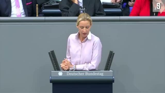 """Watch Alice Weidel im Bundestag: """"Kopftuchmädchen und andere Taugenichtse"""" GIF on Gfycat. Discover more afd, alice, bundestagsdebatte GIFs on Gfycat"""