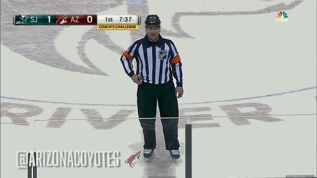 Watch and share Coyotes GIFs on Gfycat