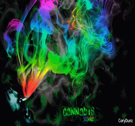 Watch and share Weed, Smoking, Bob Marley, Marijuana GIFs on Gfycat