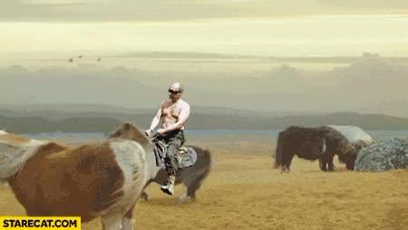Watch and share Putin Riding On Pony Horse Backwards Animation GIFs on Gfycat