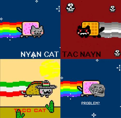 Watch and share Nyan Cat Nyan Cat GIFs on Gfycat