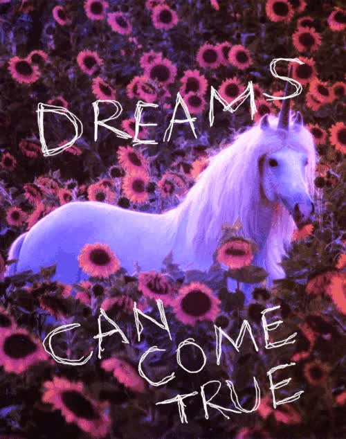 Watch dreams do come true GIF on Gfycat. Discover more related GIFs on Gfycat