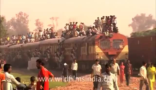 Watch and share Train Travel GIFs on Gfycat