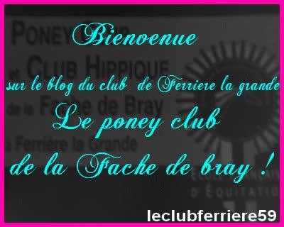 Watch and share Bonjour A Tous Et Bienvenue Sur Le Skyblog De Centre Equestre De La... GIFs on Gfycat