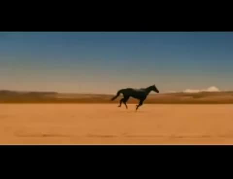 Watch and share Desert GIFs on Gfycat