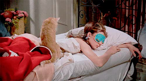 Watch this breakfast at tiffanys GIF on Gfycat. Discover more 1960s, 1961, 60s, audrey hepburn, breakfast at tiffany's, breakfast at tiffanys, cat, film, gif, holly golightly, movie, vintage GIFs on Gfycat