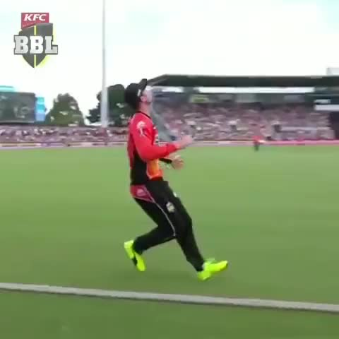 Watch and share Ashton Turner Best Catch GIFs on Gfycat