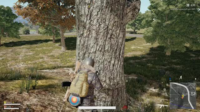 Watch and share Vlc-record-2018-05-07-21h29m40s-PLAYERUNKNOWN GIFs on Gfycat