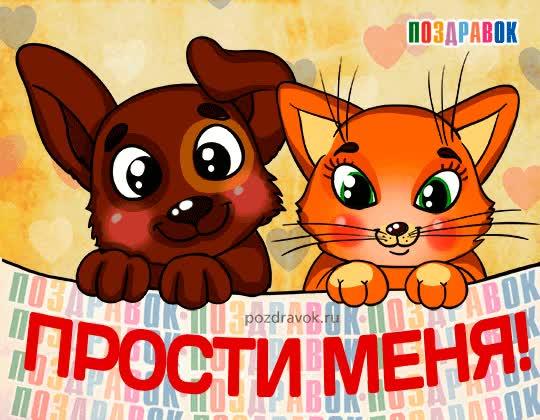 Watch and share Картинки Прости GIFs on Gfycat