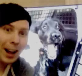 Watch sh GIF on Gfycat. Discover more amazingphil GIFs on Gfycat