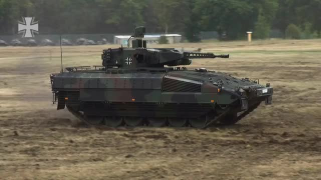 Watch and share Puma IFV GIFs by tehroot on Gfycat