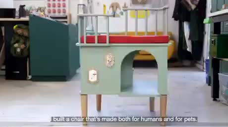 This chair for needy pets