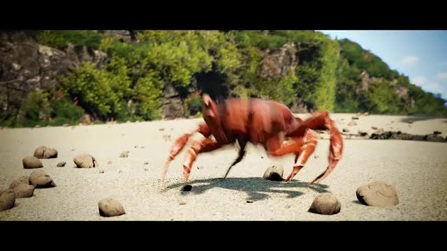 Watch Noisestorm - Crab Rave [Monstercat Release] GIF on Gfycat. Discover more Crab Rave, Monstercat, crab, crab rave monstercat, crab rave noisestorm, monstercat crab rave, monstercat instinct, noisestorm, noisestorm crab rave, noisestorm monstercat GIFs on Gfycat