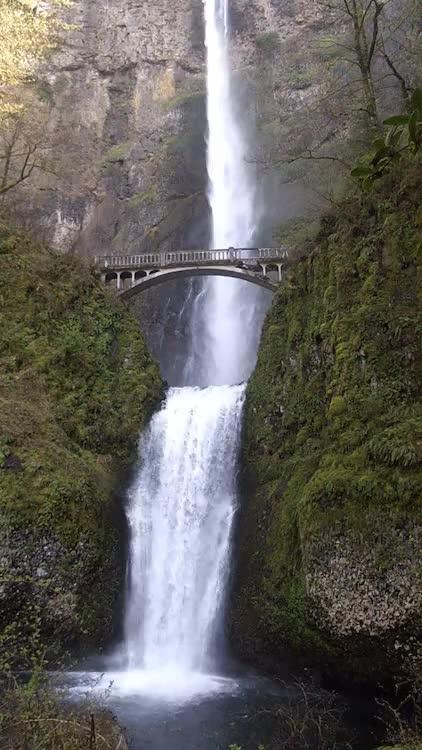 Watch and share Multnomah Falls GIFs and Usa GIFs on Gfycat