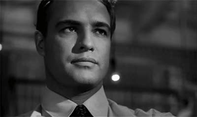 Watch and share Marlon Brando GIFs on Gfycat