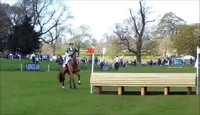 Watch and share Horses GIFs and Horse GIFs on Gfycat