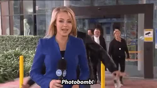 Watch Entertainment Tonight GIF on Gfycat. Discover more australia, celebs, hugh is the best, hugh jackman, local news, photobomb, reporter, sydney's childrens hospital GIFs on Gfycat