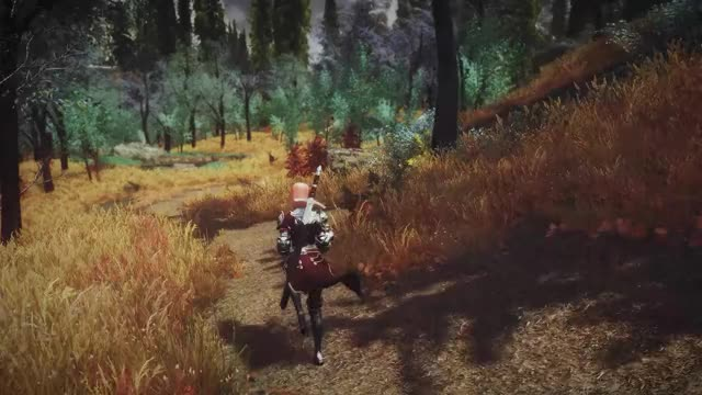 Watch and share Skyrim GIFs and Mods GIFs by sasilton on Gfycat