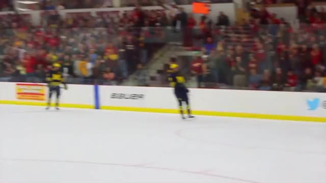 Watch and share College Hockey GIFs and Michigan GIFs on Gfycat