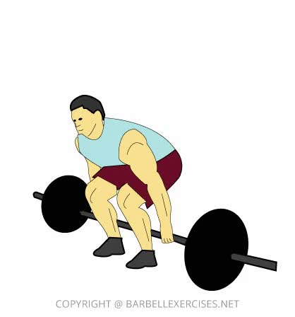 Watch and share Barbell Hack Squat » Barbell Exercises GIFs on Gfycat