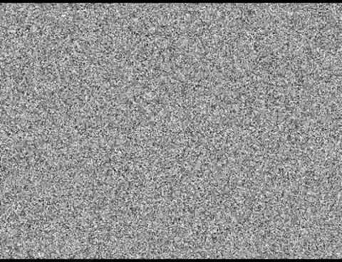 Watch TV Static effect GIF on Gfycat. Discover more All Tags, Effect, Vegas, channels, noise, sony, static, tv GIFs on Gfycat