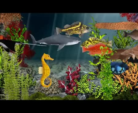 Watch and share 3D Underwater Models, 3D Oceanlife, Sealife Animals GIFs on Gfycat