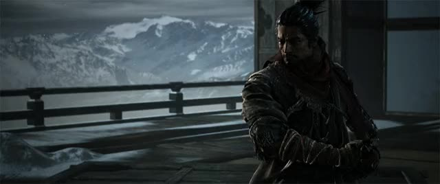 Watch and share Sekiro-mod GIFs by knox on Gfycat