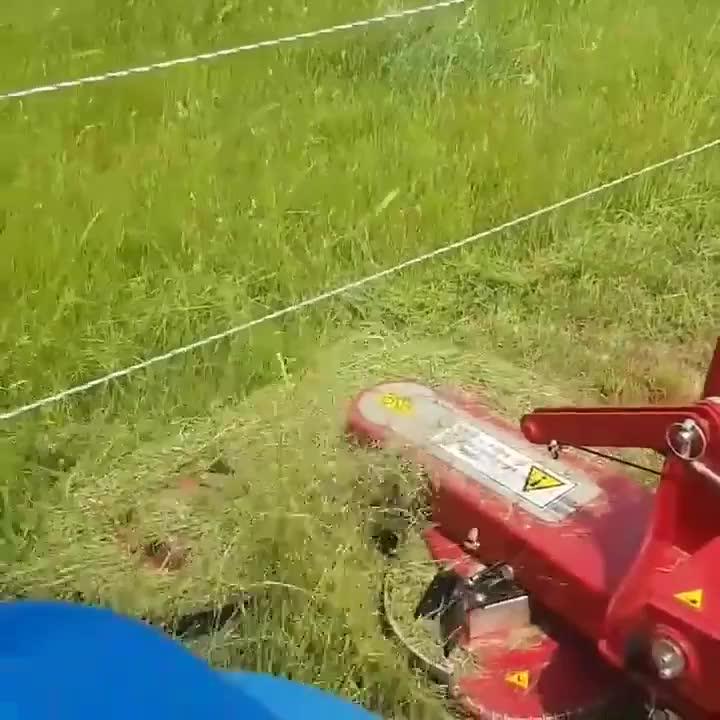 Waztoes, This mower. GIFs