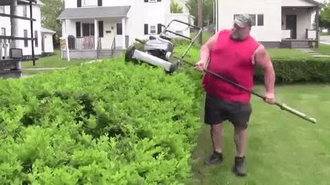 Watch Hedge Trimmer GIF on Gfycat. Discover more related GIFs on Gfycat