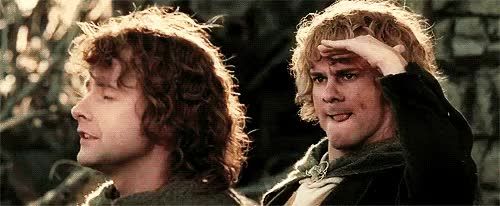 Watch this GIF on Gfycat. Discover more AU, fili, kili, lord of the rings, merry, pippin, the hobbit GIFs on Gfycat