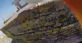 Watch and share Gaivota GIFs and Galicia GIFs on Gfycat