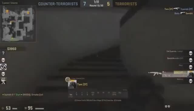 Womble vs. Cyanide Livestream Highlights