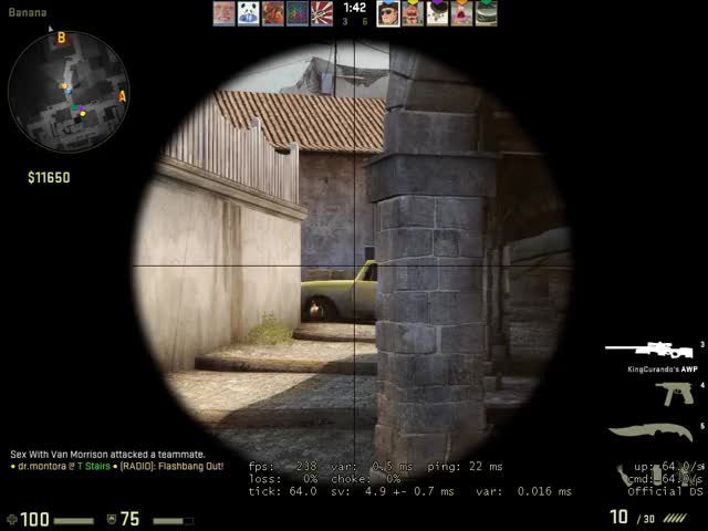 Watch and share Weird Molotov Bug? GIFs on Gfycat