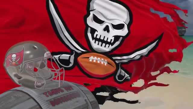 Tampa Bay Buccaneers Flag GIFs