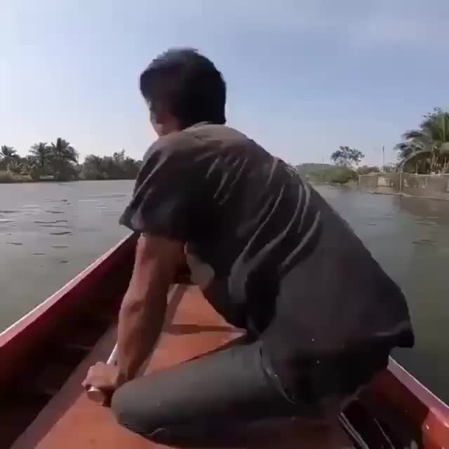boat, Need for speed boat GIFs