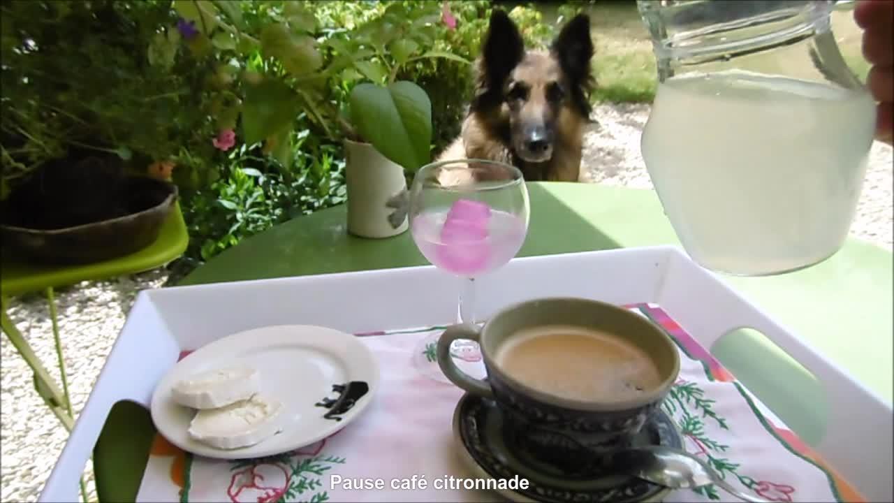 pause café en terrasse, pause café GIFs