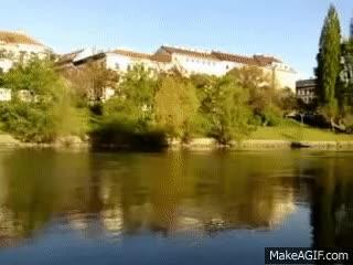 Watch and share SN- 8q GIFs by AdamonVonEden on Gfycat