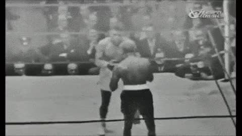 Watch white boxer GIF on Gfycat. Discover more boxer, white GIFs on Gfycat