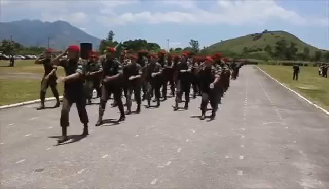 "Watch and share Brigada De Infantaria Paraquedista - ""Brasil! Acima De Tudo!"" GIFs on Gfycat"