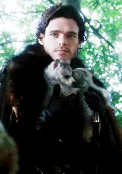 Watch and share Game Of Thrones GIFs and Richard Madden GIFs on Gfycat