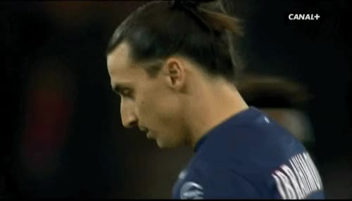 Watch and share Zlatan Ibrahimovic GIFs on Gfycat