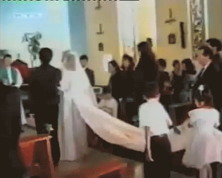 PeopleBeingJerks, peoplebeingjerks, Brother being a jerk creates an embarrassing wedding moment (reddit) GIFs