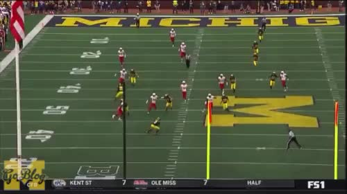 Watch and share Football GIFs and Michigan GIFs by MGoBlog on Gfycat